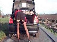 Scharfes Luder setzt sich auf die Anh�ngerkupplung vom Auto